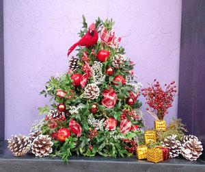 Sat Dec 12 2020 10am, Boxwood Tree, 201212101